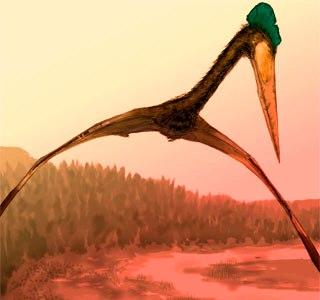 Cuposaurus  Alinghi4962924_1
